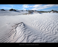 Little Sahara, Kangaroo Island, South Australia :: HDR (Artie | Photography :: I'm a lazy boy :)) Tags: nature photoshop canon landscape landscapes sand dunes tripod wave australia wideangle adelaide southaustralia ef 1740mm hdr kangarooisland littlesahara artie cs3 3xp f4l photomatix tonemapping tonemap 5dmarkii 5dm2
