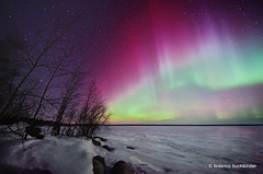 Aurora Awesomeness (/ shadows and light) Tags: trees winter sky snow cold night stars manitoba northernlights auroraborealis cme frozenlake spaceweather lakewinnipeg sandybay