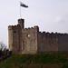 Castillo de Cardiff_8