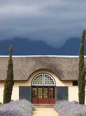 Vergelegen (Richard+Rachel) Tags: southafrica westerncape vergelegen somersetwest