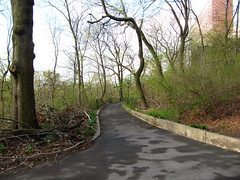 Morningside Park, 7:45 a.m., 19 April 2013 (jschumacher) Tags: nyc morningsidepark