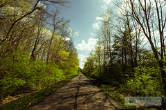 Shadows on the Trail (MattPenning) Tags: trees sky white green clouds contrast walking spring shadows pentax walk infinity sigma potd trail k5 springfieldillinois skyclouds bicycletrail mattpenning kmount sigma1020mmf456exdc mattpenningcom penningphotography justpentax pentaxk5 sangamonvalleytrail