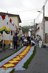 aores (ELENA TABASSO) Tags: azzorre aores portogallo portugal isola vacanza viaggio viaggi travel