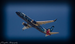 mickey-7192 (jcoughlin787) Tags: boeing738 mickey yyc takeoff flight planespotting