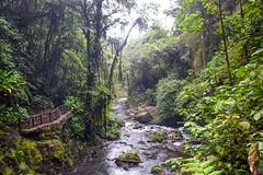Costa Rica, 2016 (Jay_Sitapara) Tags: costarica alajuela provinciadealajuela san jose la paz waterfall water ocean pacific island flag downtown resort centro