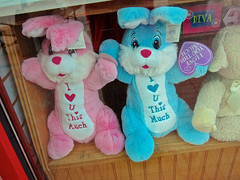 This Much, Cedar Rapids, IA (Robby Virus) Tags: cedarrapids iowa stuffed animals rabbits bunnies i love you this much pink blue store window display