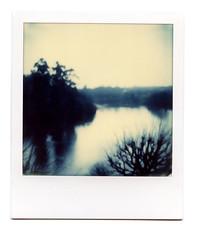 (~ Nando ~) Tags: polaroid sx70 theimpossibleproject instantfilm printscan epsonv700 vuescan analog analogue slr singlelensreflex square squareformat landscape
