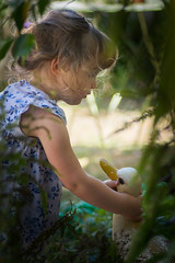 la fillette au canard (G.NioncelPhotographie) Tags: fillette enfant canard douceur