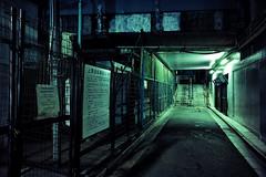 untitled (Noisy Paradise) Tags: tokyo night street light longexposure underpass urban city japan green sigmadp0quattro foveon