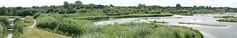 SAM_0491 (Duncan.B) Tags: wetlands wwtbarnes samsungnx samsung nx10 panorama panoramic