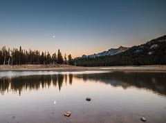 Moonshine (MarcCooper_1950) Tags: mammoth lakes landscape outdoors scenery mountains trees lakeshore nikon d810 marccooper lightroom horseshoelake sunset dusk twilight moon reflections glow easternsierras samyang rokinon 14mm