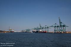 Flandria Havenrondvaart [10] (Werner Wattenbergh) Tags: flandria ferry schip veerboot antwerpen belgie bel