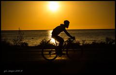 The Dawn Cyclist... (kirby126) Tags: bikebeardedman sun rise beautiful early morning dawn bike majorca spain canon60d canonf18mm