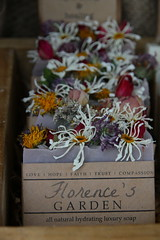 Florence's Garden (chestnutgrey) Tags: sarahoettli chestnutgrey 17september2016 september 2016 september2016 canoneos550d canon canon550d 550d tamahere tamaherecountrymarket soap wouldntknowemfromabarofsoap newzealand florencesgarden