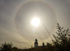 Lighthouse Halo..x (lisa@lethen) Tags: lighthouse halo weather sun weeds nature chanonry point fortrose