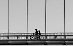 I Want to Ride My Bicycle (Jarrad.) Tags: architectural blackandwhite bridge d800e design jaymarksimages monochrome newzealand nikon bikes