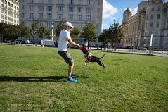 DSC06154 (liverpix) Tags: cleo dog performing anthonywalsh photowalk 500px liverpool pierhead liverbuilding ballerina ballet