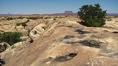 Pothole Point Trail, Canyonlands National Park (Anomieus) Tags: canyonlands desert utah nature landscape rock sky potholepointtrail outdoor neverstopexploring canyon rockformation geology