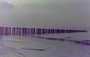 dutch winter (94) (bertknot) Tags: winter dutchwinter dewinter winterinholland winterinthenetherlands hollandsewinter winterinnederlanddutchwinter