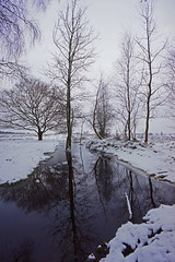 Tall reflections (Stephen Robb Photography) Tags: road wood uk trees winter england mist snow cold reflection beauty cemetery grave weather misty fog forest woodland point puddle concrete drive hall war stream stag natural dusk path name south lakes foggy style deer pines cannock german springs valley cop heath area western chase tall trunks their staffordshire commonwealth katyn marquis shugborough heathland outstanding stags trig waterlogged rugeley brindley brocton liveth 2013 shirebrook hazelslade chasewalk beudesert