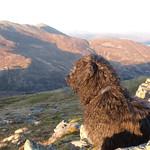 Dougal air Beinn Aslaig thumbnail