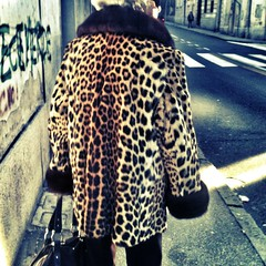 la maledizione del giaguaro (duineser) Tags: fur elezioni iphone pelliccia giaguaro uploaded:by=flickrmobile flickriosapp:filter=chameleon chameleonfilter vecchiagheparda