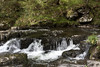 IMG_8813 (rebecca.wood) Tags: landscape devon lynmouth canonefs1855
