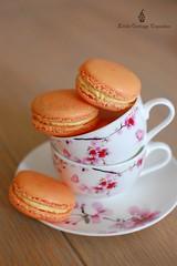 Exotic Fruit Macaron (Little Cottage Cupcakes) Tags: macarons littlecottagecupcakes