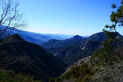 Sequoia National Park (David Stone 14) Tags: california park sky cliff mountains tree rock cali stone pine nikon view peak brush hills pines national vista 1855 sequoia dx d3100
