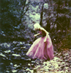 (theonlymagicleftisart) Tags: nature polaroid forrest muirwoods promqueen promdress blacklagoon 680slr colorshade impossibleproject px680 colorprotection