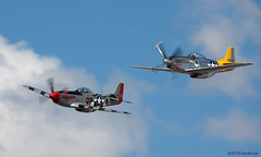 P51 Mustangs (Tom_Morris Photos) Tags: fighter wwii mustang dolly caf warbird p51 manowar p51d northamerican spamcan commemorativeairforce confederateairforce planesoffamemuseum n451tb n44727
