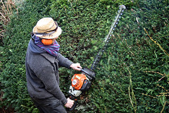 hedge trimmer @ work (cool_colonia2.0) Tags: manatwork strawhat gardener stihl heckenschere strohhut hedgetrimmer grtner kraftdurchgrn