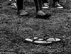 tsinelas (masterxiomai) Tags: song slippers pinoy yano tsinelas