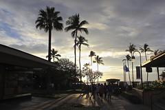 IMG_2599 (Traveller's Heaven) Tags: road vacation sun beach fruit hawaii rainforest style convertible maui fresh haleakala hana mustang helicopters