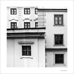 Prague I (Torsten Wolf) Tags: windows bw white black film nikon prague scanner developer f3 12 nikkor 50 coolscan 9000 ais efke adox adolux
