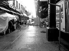 looking for cover (Robert S. Photography) Tags: street nyc winter people bw monochrome rain fog umbrella casio stores brookyn rainydays 2013 exzs5