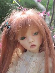 DOLLSTOWN MOMO (sydney2dolls) Tags: momo dollstown