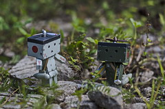 My country house (Suliveyn) Tags: danboard danbo zero fighter