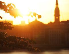 Hermans glow 3 (Helen White Photography) Tags: hermans restaurant vegetarian stockholm terraced gardens view sunset summer