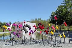 REFORD GARDENS   |      SE MOUILLER           |     REFORD GARDENS  |      LES JARDINS DE METIS  |  METIS   |  GASPESIE  |  QUEBEC  |  CANADA (J.P. Gosselin) Tags: reford gardens | se mouiller les jardins de metis gaspesie quebec canada semouillerlabelleéchappée 2015 ph:camera=canon canoneosrebelt2i canoneos7d canon eos rebel t2i canon7dmarkii 7dmarkii 7d markii mark ii canon7d eos7d canoneos