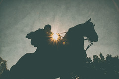 A-King-In-The-Sun (AroundMyTown) Tags: statue horse king edwardvii queenspark toronto silhouette