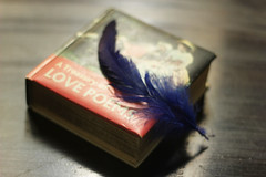 The Infinite search ....(Explored) (Synthia Mazumder) Tags: lovepoems lovestories feather poem book search rumi blue