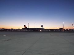 Condor A-320 (antallajos) Tags: munich airfrance klm uzbekistan airbus boeing ellinair condor germania transavia b767 b737700 b737800 a320 a319 mnchen