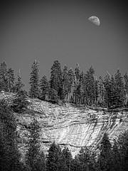 Moon at Yosemite (-Jan-) Tags: schwarzweis usa blackandwhite bw topazbweffects olympus em1 omd