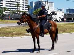 160508_25_FtLaudMountie (AgentADQ) Tags: fort lauderdale florida 2016 air show airshow flying mounted police officer horse