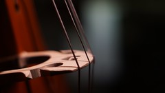sound of silence (_photoloser_) Tags: 50mm minoltamd instrument cello