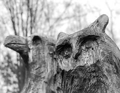 U-uuuuh (CarSaBe) Tags: eule adler eagle owl wood holz tree baum bume forest wald face portrait eyes beak schnabel augen nature natur trees schnitzen art kunst texture
