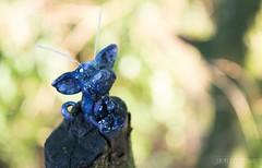 Galaxt Troll (Shirleys Studio | Handmade Art Dolls) Tags: shirleysstudio shirleys studio beeldende kunst art artist grotto troll ooak dolls trollen trolletjes boswezens fantasy doll artdoll trol trolls figurine handmade