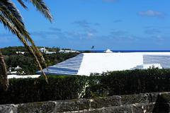 aGilHDSC_4319 (ShootsNikon) Tags: bermuda ocean atlantic subtropical beaches nature colorful island paradise