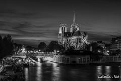 Notre Dame - Paris - France (vlegallic) Tags: paris ledefrance france fr notredame notredamedeparis seine noiretblanc blackandwhite bw nightshot urbannightshot night nuit parisbynight parislanuit d610 nikond610 nikon tamron tamronsp2470mmf28divcusd tamron2470